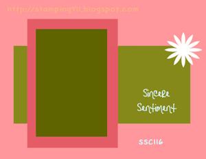 SUSSC116